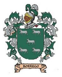 APELLIDO BORREGO